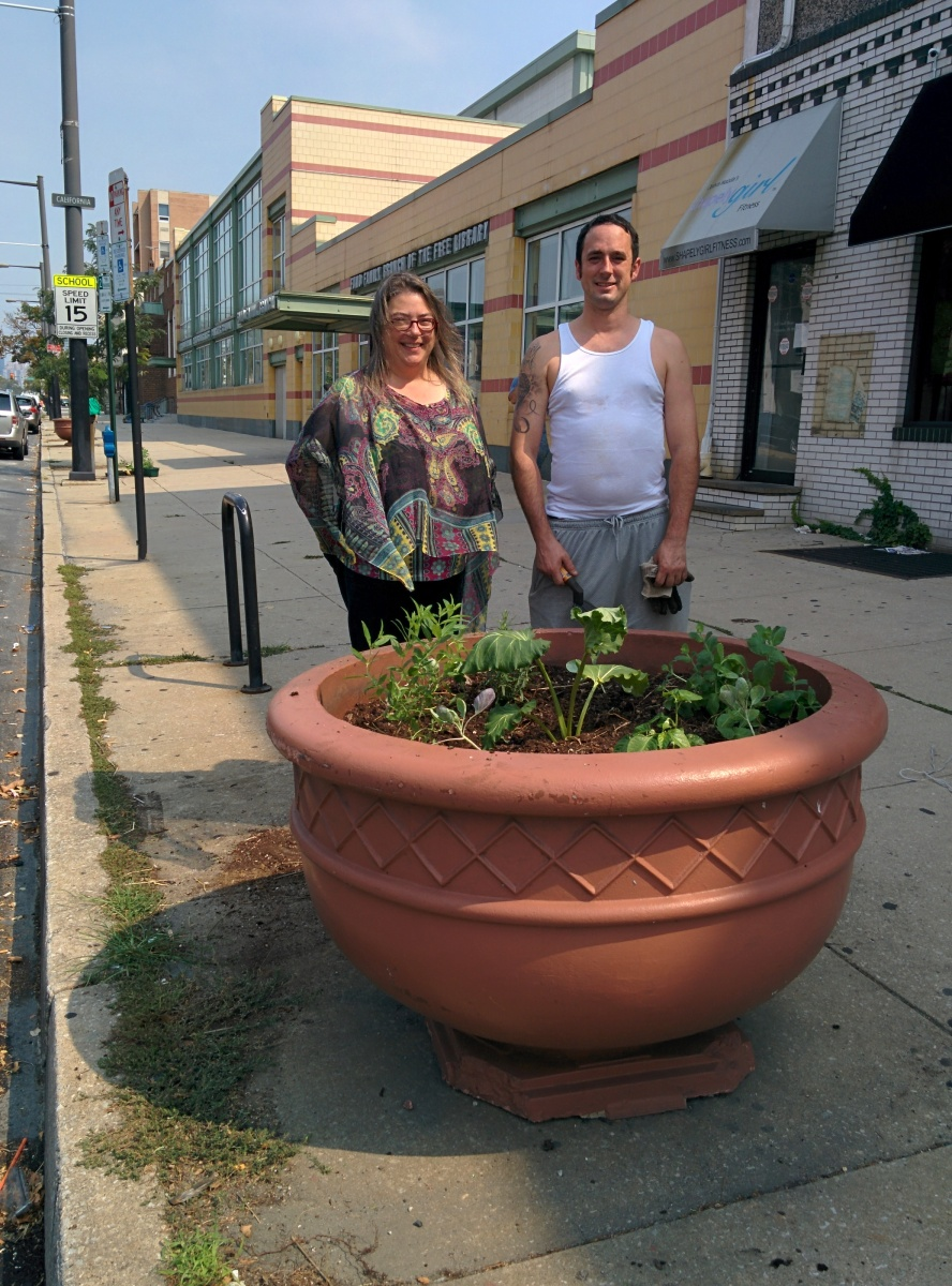 Pennsylvania Horticultural Society >> Beautifying Sidewalk Planters at the Fumo Library – Lower Moyamensing Civic Association